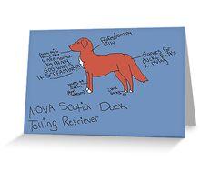 Nova Scotia Duck Tolling Retriever Greeting Card