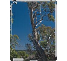Evans Gum iPad Case/Skin