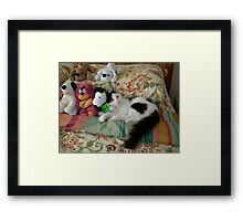 Catalina among the toys Framed Print