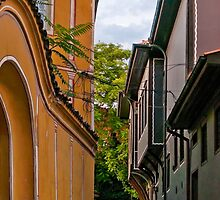 Traditional Houses in Old Plovdiv, Bulgaria by atomov