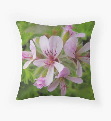 Lemon-scented Geranium Throw Pillow
