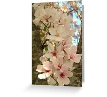 String of Blossoms Greeting Card