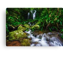 Hidden Beauty Canvas Print
