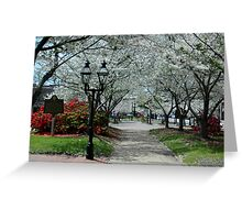 Beautiful Park Greeting Card