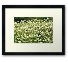 Nature 4 Framed Print