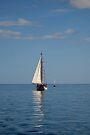 The Mar II by Darlene Ruhs