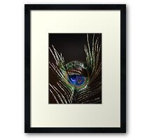 The Peacock Dude! Framed Print