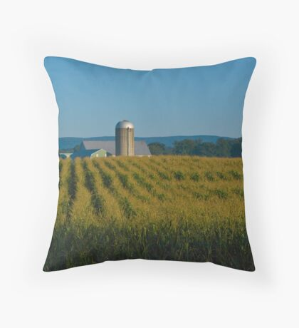 Morning on the Farm late August Throw Pillow
