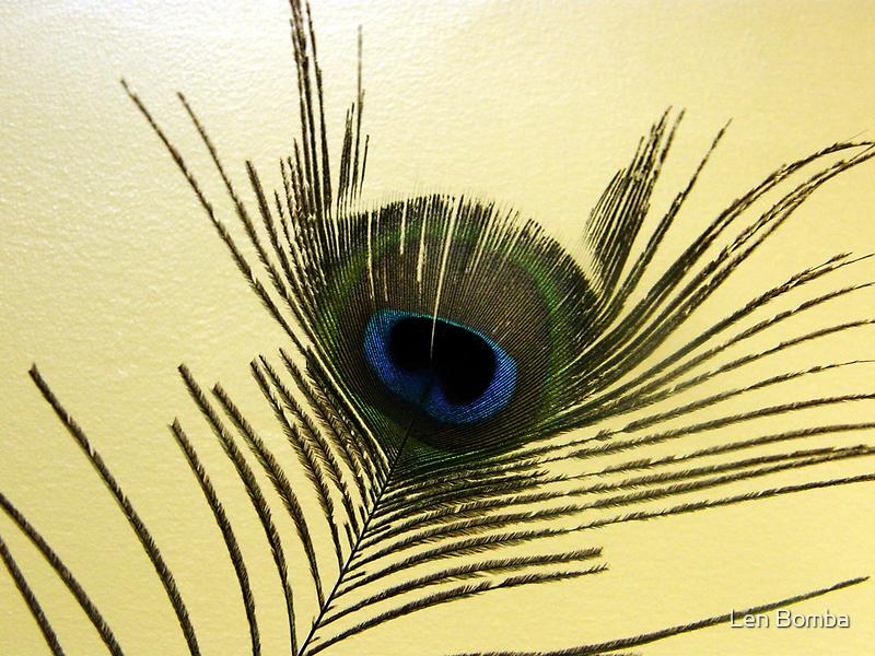 The Peacock Dude! #4 by Len Bomba