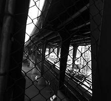 Brooklyn Bridge by David Petranker