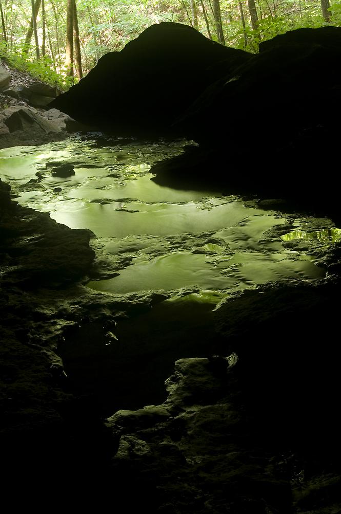 bubbling green by D. W.  Batterman