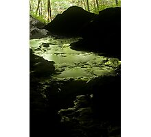 bubbling green Photographic Print