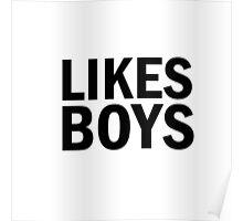 Glee: Likes Boys Poster