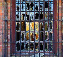 Looking In! by Bev Woodman