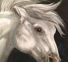Pale Grey Horse by ksimmonsluna