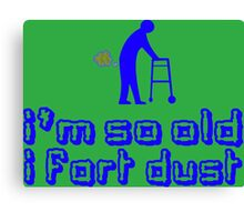 IM SO OLD I FART DUST Funny Geek Nerd Canvas Print