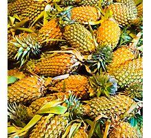 Pineapples Photographic Print