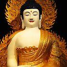 Brisbane Buddha Birthday Festival – May 2008 by Steve Blake : - Akuna Photography Bendigo