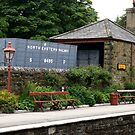 Goathland Station by Trevor Kersley