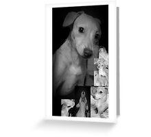 PUPPY MANIA! Greeting Card
