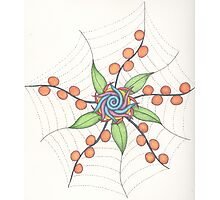 The Web of Life Photographic Print