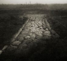 Roman Road by Marco Scataglini