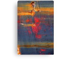 Exploding Canvas Print