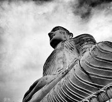 Buddha Looks On by paul levy