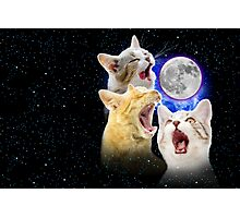 Exclusive Three Cat Moon Design! Photographic Print