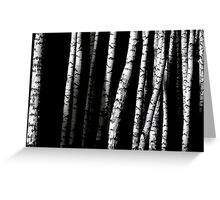 Birch Abstract Greeting Card