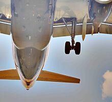 The Plane by pjesten