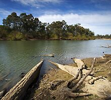 Murray River at Corowa by Darren Stones