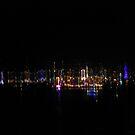 City of Light by John Douglas