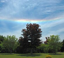 Circumhorizon Arc 2008-05-28 13:49:22.2 by Paul Gitto