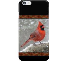 Oh, the Weather Outside Is Frightful   iPhone Case/Skin