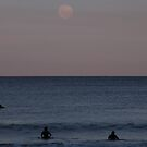 The Moon, the Dolphin and the Surfers. by Trish Meyer