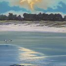 Approaching Storm - South Crowdy by louisegreen