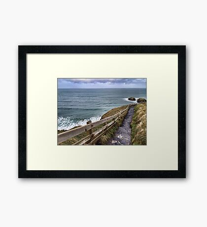 Carrick-a-Rede Stairs Framed Print