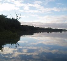 Reflections at Murray Bridge. by elphonline
