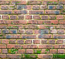 weathered brick wall with various shades of brick.  by Sergieiev