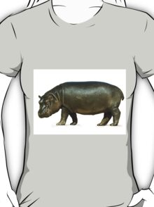 figure of a young hippo. Isolation on white background T-Shirt