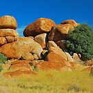 The Devil's Marbles # 2 by Penny Smith