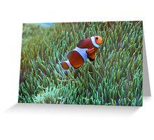 Nemo? Greeting Card