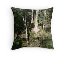My Shadow 120 ft below aka - I'm how far up? Throw Pillow