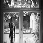The View from the Kitchen by Bine
