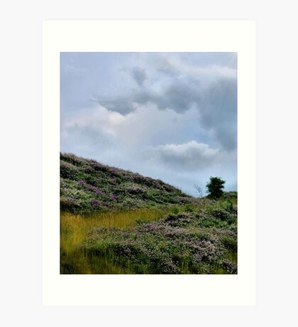 Field of Clover Art Print