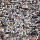 River Rocks by Carol Barona