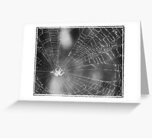 Eensy Weensy Spider Greeting Card