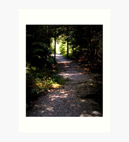Pathway Out Art Print