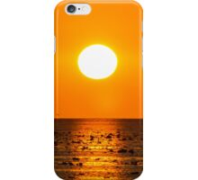 Heron Sunrise iPhone Case/Skin